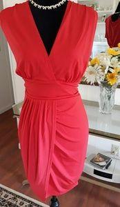 Nwot Venus dress